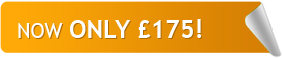 TEFL Course Now Only £ 175